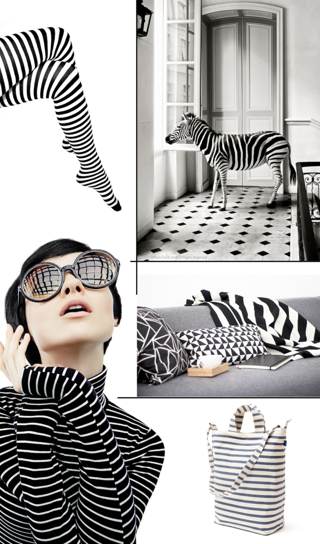 Striped - by Coco Lapine