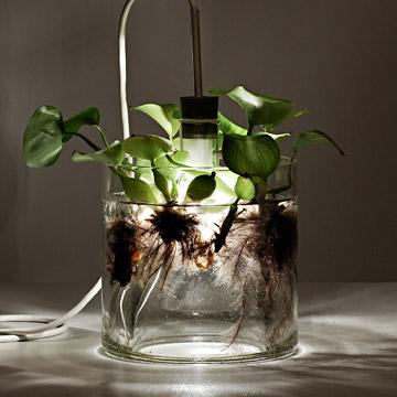 Vase & Leuchte - via Coco Lapine